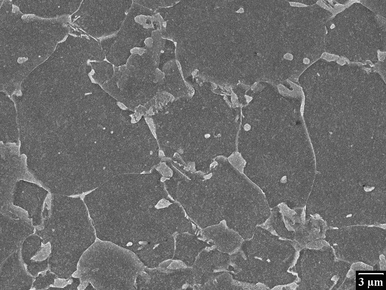 Micrographie d'un acier
